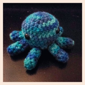 This one is a smaller octopus.