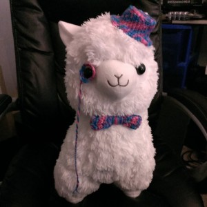 My alpaca needed some accessories. He will soon have a vest.