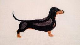 Black Dachshund